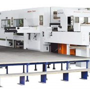 Высокоскоростной автоматический плосковысекательный станок AP-1700 фото