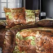 Семейный постельный комплект К0006 фото