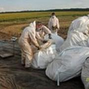 Утилизация пестицидов и агрохимикатов фото