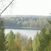 Оздоровительные туры в Беларусь фото