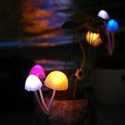Светильник-ночник фото