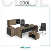 Мебель для Руководителей фото