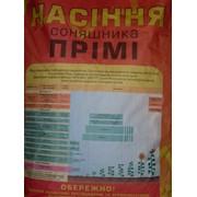 Семена подсолнечника Прими Clearfield Сербия фото
