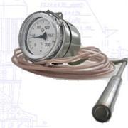Термометр манометрический, конденсационный, показывающий, электроконтактный ТКП-100Эк, ТГП-100Эк фото