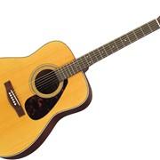 Гитары акустические фото