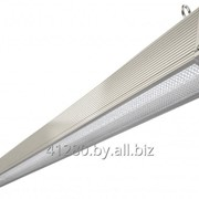 Аварийный торговый светильник TL-PROM TRADE 50 PR P L1550 БАП 24 фото