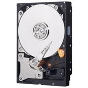Жесткий диск 500 Gb Western Digital Blue Sata фото