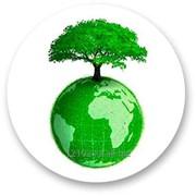 Анализ выбросов токсичных газов в атмосферу фото