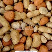 Сухой корм для собак мелких пород фото
