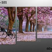 Картина модульная М-101, размер 60х90 фото