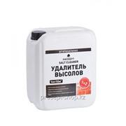 021-5 PROSEPT SALT CLEANER. Удалитель высолов концентрат 1:2, 5 л. фото