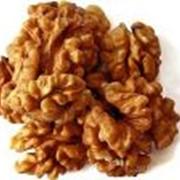 Продажа орехов оптом фото