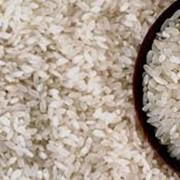 Производство риса фото