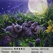 GB73126 Кролики Алмазная мозаика 30х40 фото