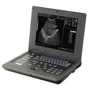 Сканер ультразвуковой для ветеринарии. фото