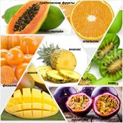 фрукты тропические фото