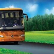 Проезд В Анапу и Геленджик (Кабардинка) автобусом  фото