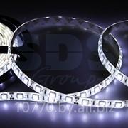 LED лента герметичная в силиконе, ширина 10 мм, IP65, SMD 5050, 60 диодов/метр, 12V, цвет светодиодов белый фото