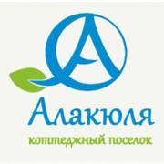 """Участки в коттеджном поселке """"Алакюля"""" фото"""