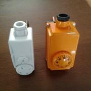 Терморегулятор погружной фото
