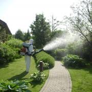 Обработка газонов ядохимикатами фото