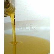 Масло подсолнечное нерафинированное Премиум качество фото