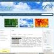 Создание web-сайта фото