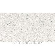 Искусственный камень Corian Silver Birch фото