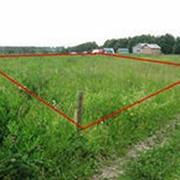 Изготовление схем расположения земельных участков на кадастровом плане территории фото