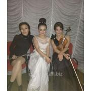 Певцы казахстанской эстрады фото