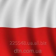 Флаг Польши фото