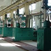 Оборудование для отжима растительного масла 30 тонн/сутки фото