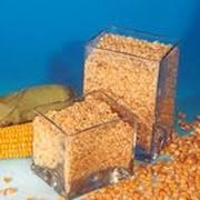 Премиксы для сельскохозяйственных животных фото