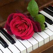 Настройка фортепиано Харьков фото