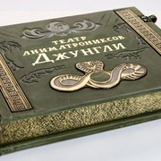 Книга Джунглей фото