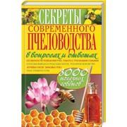Секреты современного пчеловодства в вопросах и ответах фото