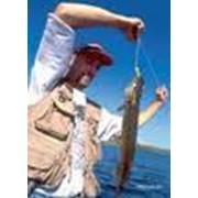 Производство оборудования для рыболовства фото