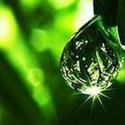 Бисаболол натуральный 5 мл фото