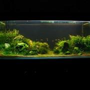 Изготовление аквариума фото