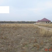 Продаем земельный участок 8 соток фото