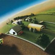 Система GPS мониторинга контроля транспорта с учетом топлива фото