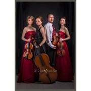 Струнный квартет Astorio скрипка живая музыка фото