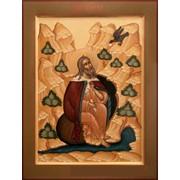 Святой Пророк Илия (30Х40 см. Дерево, левкас, паволока, темпера, позолота.) фото