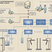 Идентификаторы электронные Touch Memory или Proximity - карты фото