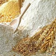 Борошно пшеничне 1/г фото
