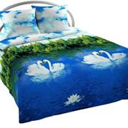 Комплект постельного белья «Swans» фото