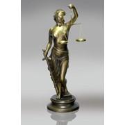 Адвокатская профессиональная защита и юридическая помощь фото