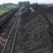 Уголь бурый Кузнецкий, энергетический, марка Б-3 фото