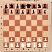 Демонстрационные магнитные шахматы 100 см фото