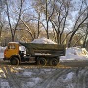 Оперативный вывоз снега 5т фото